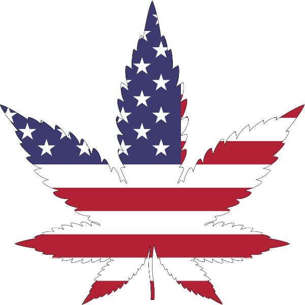 American flag graphic in the shape of a marijuana leaf
